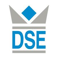 Fynt_DSE IT-Services Logo